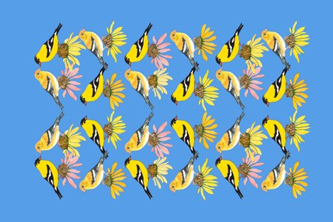 Rgoldfinches-and-coneflowers_shop_preview