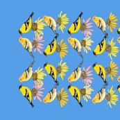 Rgoldfinches-and-coneflowers_shop_thumb