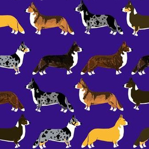 corgi fabric - cute corgi fabric, corgi fabric by the yard, dog fabric, dog fabric by the yard, dogs, dog coat colors, corgi coat colors, cute dogs