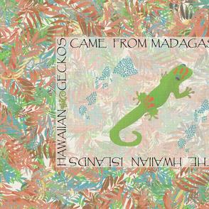 Illustrated Hawaiian Gecko by kedoki