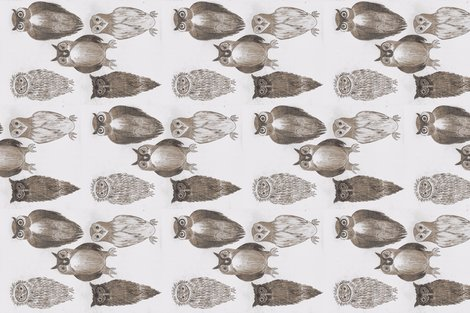 Rrrrwisdom-of-owls-2_shop_preview