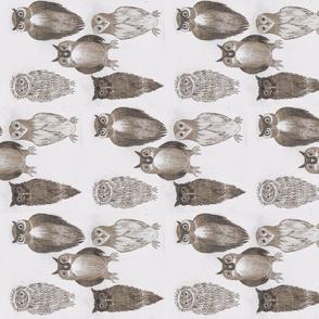 Wisdom of Owls _2-ch