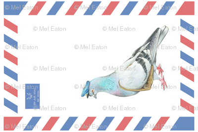 Air Mail Carrier Pigeon - Illustrated Animals Tea Towel Challenge