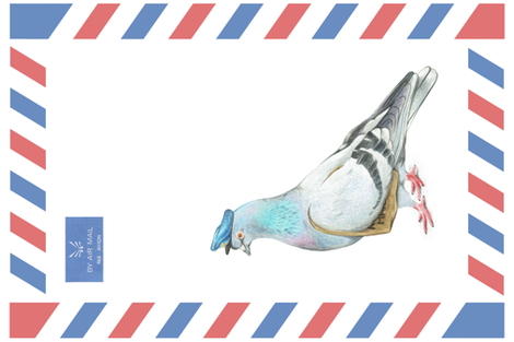 Air Mail Carrier Pigeon - Illustrated Animals Tea Towel Challenge fabric by meleatondesigns on Spoonflower - custom fabric