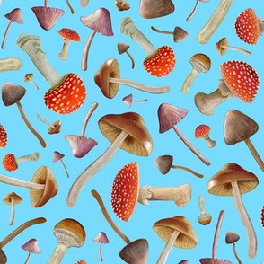 Marvelous Magic Mushroom Scatter on Light Blue