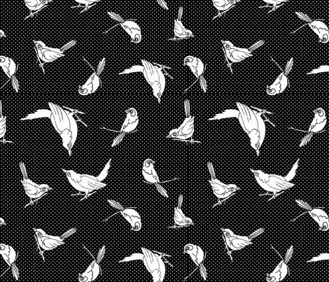 Garden-birds-shadows-blackwhite_shop_preview