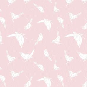 Garden Birds shadows soft pink
