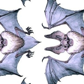 Watercolor Bat