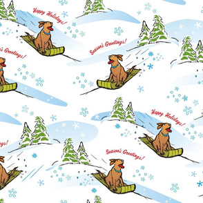 Winter Holiday Dog Sledding