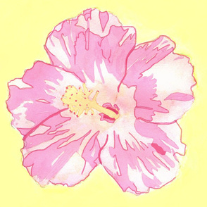 Pink Hibiscus with Yellow