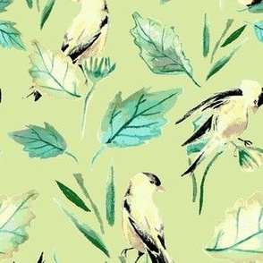 Goldfinches on green