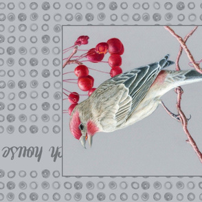 House Finch Tea Towel