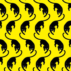 black cats on yellow