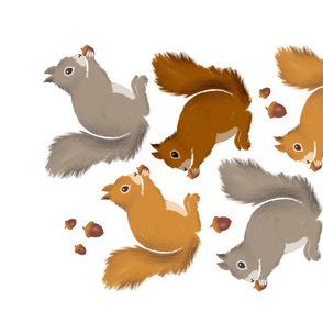 Squirrels & Acorns Teatowel