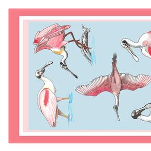 Roseate spoonbill Roostery tea towel