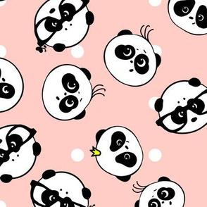 Cute Pandas Kawaii