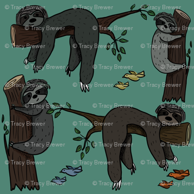 Sleepy Sloths on Medium Teal