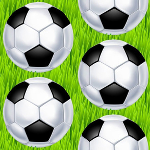 Soccer Ball on Tall Green Grass