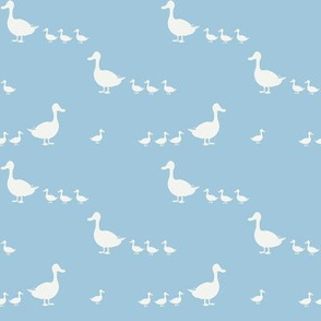 Ducks on baby blue