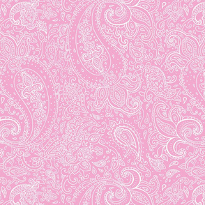 Paisley White on Pink