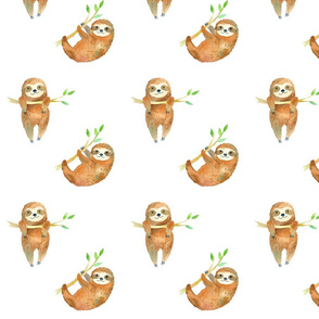 Baby Sloths // White