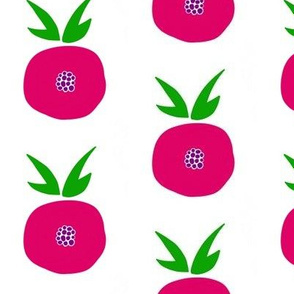 Pomegranate Popart