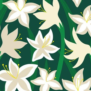 White Amaryllis_Dark Green