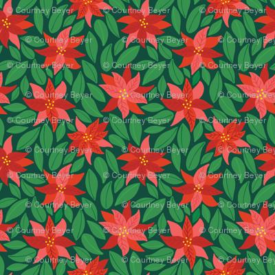 Poinsettias_dark green