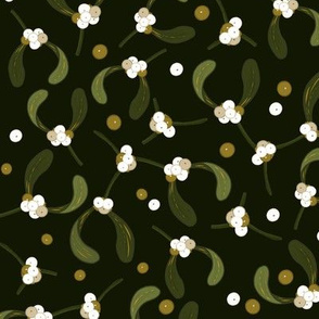Mistletoe_Iveta Abolina