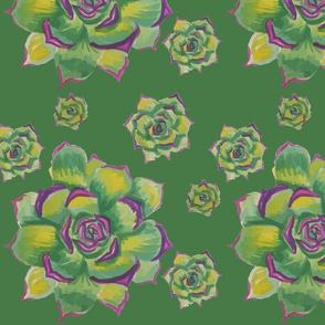succulentmotif