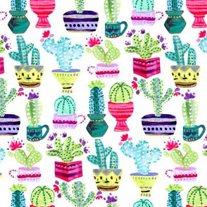 White Cacti