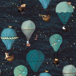 Forest Animal Hot Air Balloon Night Adventure