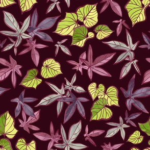 Sweet Potato Leaves / Burgundy