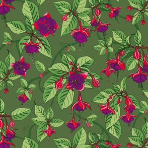 Sweet Fuchsia