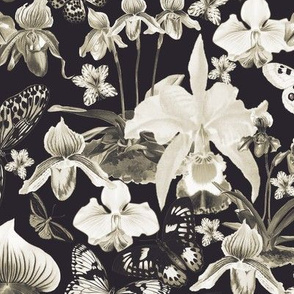 Orchids and Butterflies Greyscale