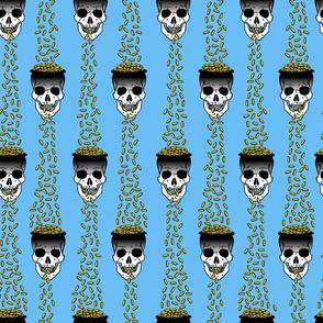 gold skulls blue