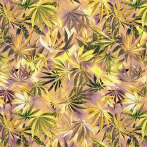 Pale Lavender Green Cannabis