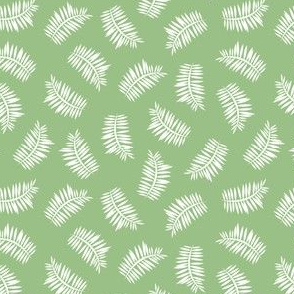 Grass Green Ferns