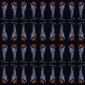 Bats -  mirrored
