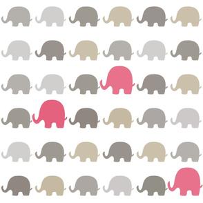 Elephants-7