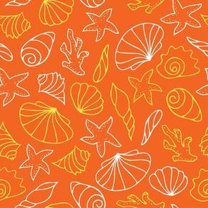 shell_pattern_3
