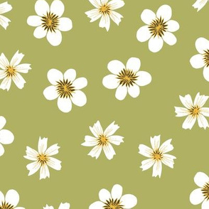 white flowers on avocado green