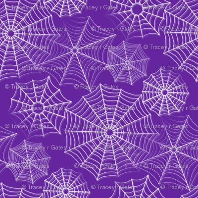 spiderwebs purple