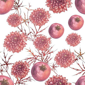 Dalie-Granatapfel_reinweiss
