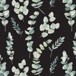 Silver Dollar Eucalyptus // Black
