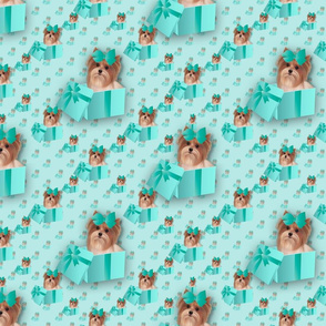 Parti Yorkie Present - Teal