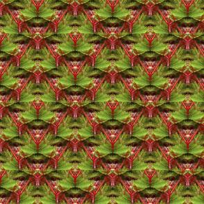 Evil Okra Lattice   Vegetable Kaleidoscope Print