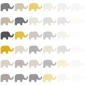 Fading Elephant-1