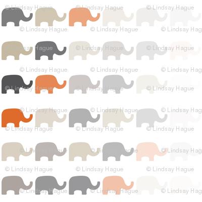 Fading Elephant-5