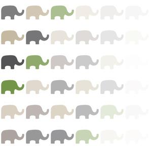 Fading Elephant-6